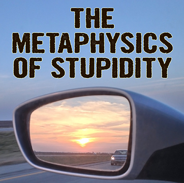 The Metaphysics of Stupidity